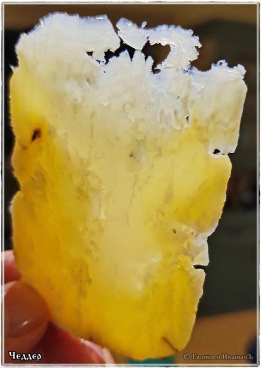 Чеддер (Cheddar) из козьего молока